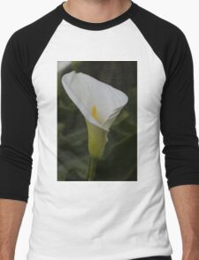 lily blooming in the garden Men's Baseball ¾ T-Shirt