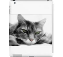 Ennui iPad Case/Skin