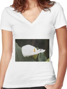 lily blooming in the garden Women's Fitted V-Neck T-Shirt