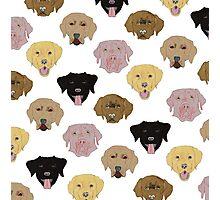 Labradors - Dog pattern Photographic Print
