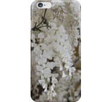 white wisteria in spring iPhone Case/Skin