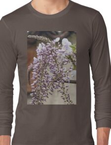 white wisteria in spring Long Sleeve T-Shirt