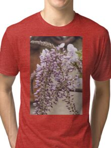white wisteria in spring Tri-blend T-Shirt