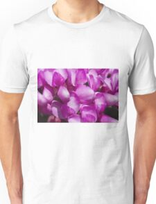 pink wisteria in spring Unisex T-Shirt