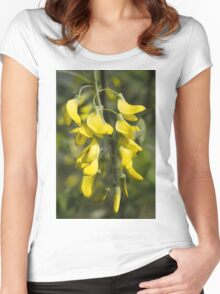 yellow flowers in spring Women's Fitted Scoop T-Shirt