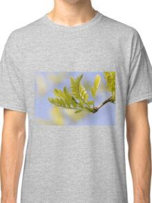 tree in spring Classic T-Shirt