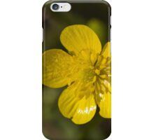 yellow flowers in spring iPhone Case/Skin