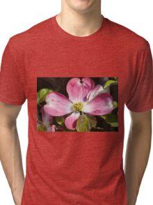 blooming magnolia flowers in spring Tri-blend T-Shirt