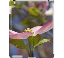 blooming magnolia flowers in spring iPad Case/Skin