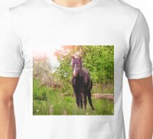 Dark bay horse Unisex T-Shirt