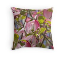 blooming magnolia flowers in spring Throw Pillow