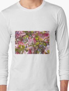blooming magnolia flowers in spring Long Sleeve T-Shirt