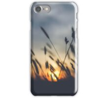 Horizon (Grass and the Sunset) iPhone Case/Skin