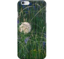 flowers and flowers and grass iPhone Case/Skin