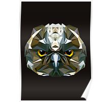 Owl low poly Poster