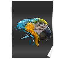 Parrot low poly Poster
