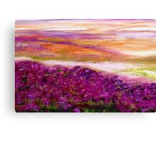 Coloured heath Canvas Print