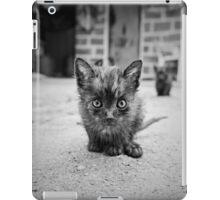Stray Cat #1 iPad Case/Skin