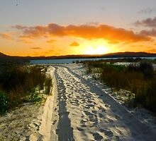 The Sand Way by Sandro Rossi