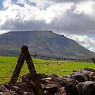 Ingleborough over the Wall by mikebov