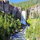 Tumalo Falls by Marita Sutherlin