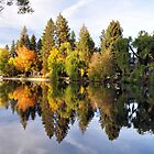 Why it's called Mirror Pond by worldtripper