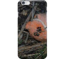 Frozen dog tennis ball in the garden iPhone Case/Skin