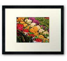 Healthy colours Framed Print