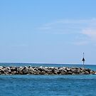 Jupiter Florida by alicede