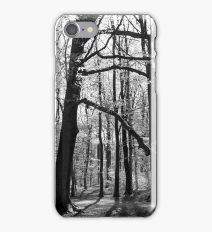 The Mirrored Forest iPhone Case/Skin