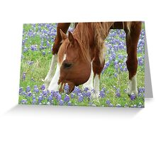 Country Heaven Greeting Card