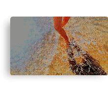walking through the water Canvas Print
