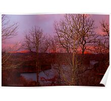 winter morning over the lake  Poster