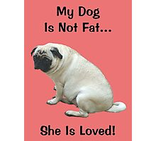 My Dog is Not Fat! She is Loved Photographic Print