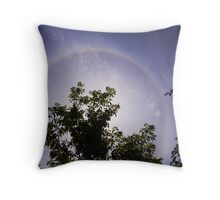 halo in chinese garden Throw Pillow
