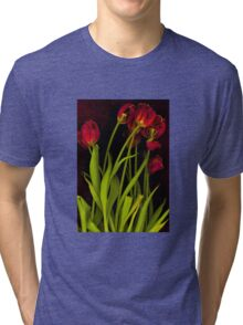 Hot Tulips Tri-blend T-Shirt