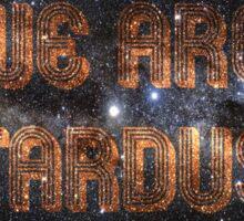 We Are Stardust Sticker