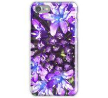 Invincible Summer ... 3 iPhone Case/Skin