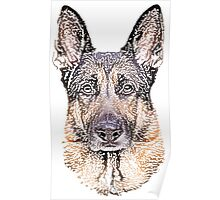 German Shepherd Pencil Art Poster