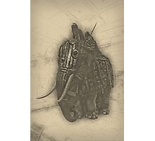 Armoured Elephant Photographic Print