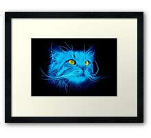 Blue Cat Framed Print