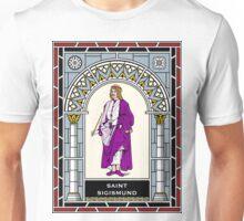 ST SIGISMUND under STAINED GLASS Unisex T-Shirt