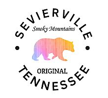 SEVIERVILLE TENNESSEE SMOKY MOUNTAINS ORIGINAL NATIONAL PARK BEAR Photographic Print