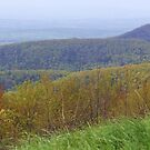a drive at Shenandoah National Park  by ANNABEL   S. ALENTON
