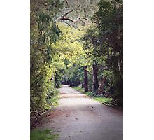 A Walk to Remember Photographic Print