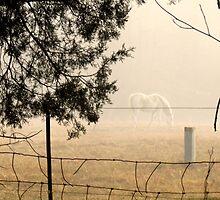 Misty Morning by Patricia Ledbetter