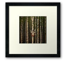 Deer hanging out in a forest Framed Print