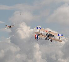 WWi - The Fokker Scourge - Eindecker  by Pat Speirs
