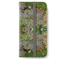Succulent lovers gifts green iPhone Wallet/Case/Skin