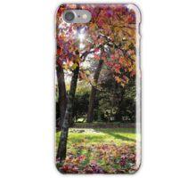 Autumn Woodland iPhone Case/Skin